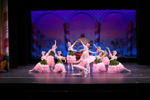 Nutcracker Photo